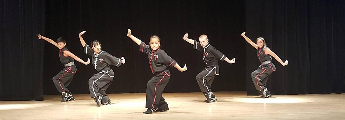 Nee's Kung Fu